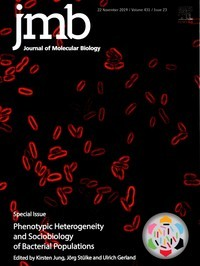 jmb special issue Phenotypic Heterogeneity 1